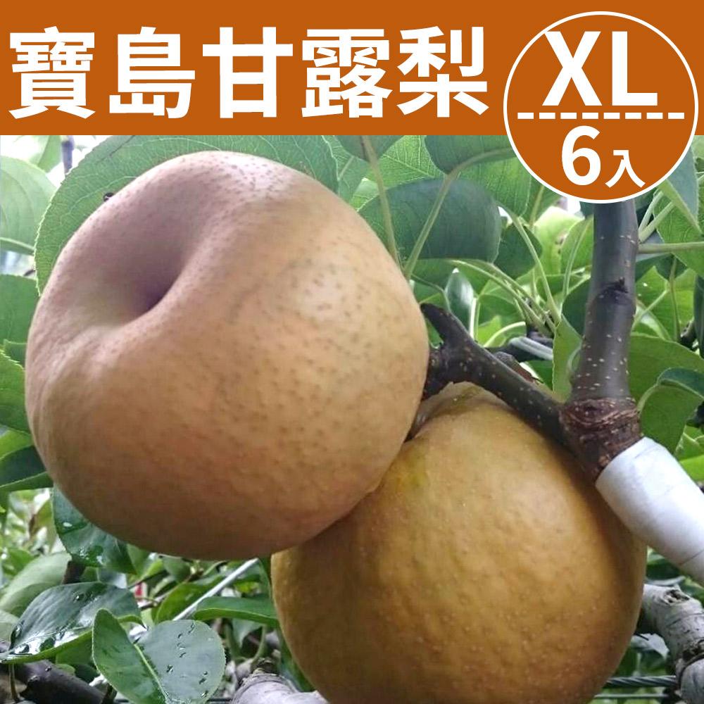 [甜露露]台灣寶島甘露梨XL 6入禮盒(7斤±10%)