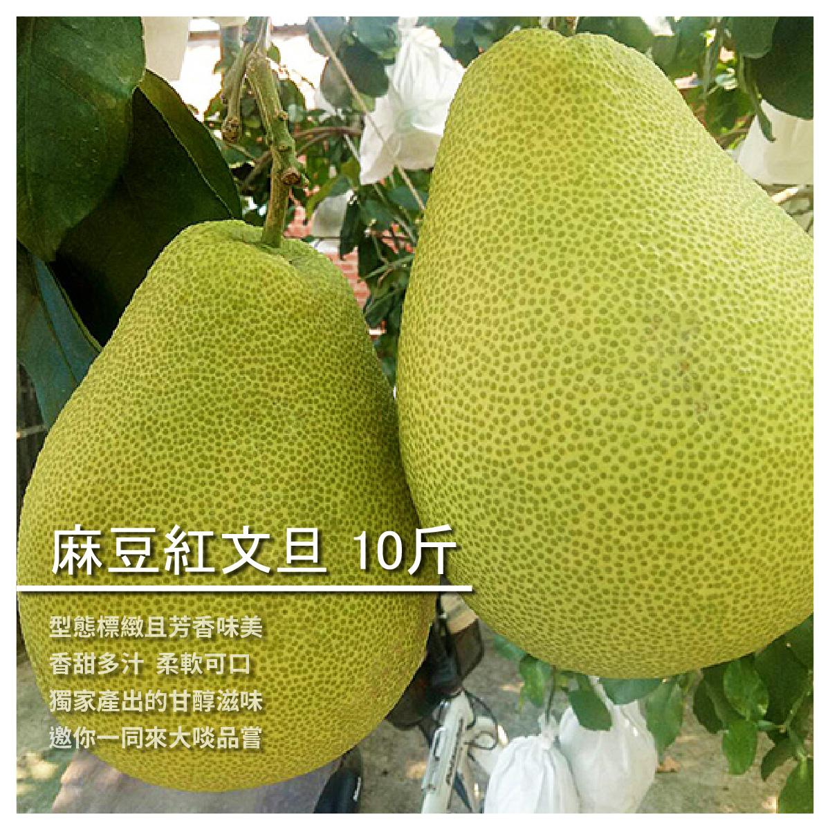 【柚香世家】麻豆紅文旦 10斤