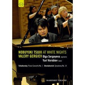 辻井伸行 在俄羅斯白夜音樂節 葛濟夫指揮馬林斯基劇院管弦樂團 DVD