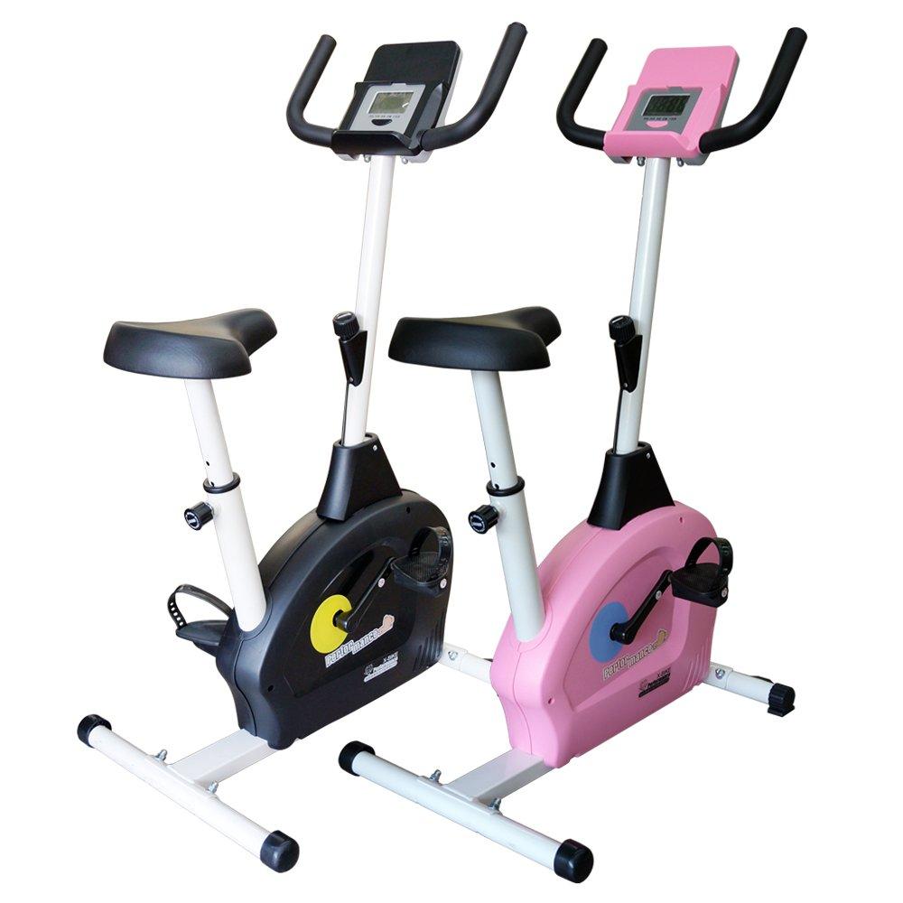 【 X-BIKE 晨昌】立式磁控健身車_小綿羊 全新登場(可放平板.手機) 台灣精品 60200