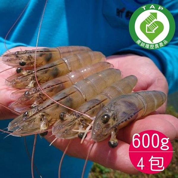 產銷履歷達人-唐大哥酵素白蝦(600g/24-36尾/4包)-含運組-