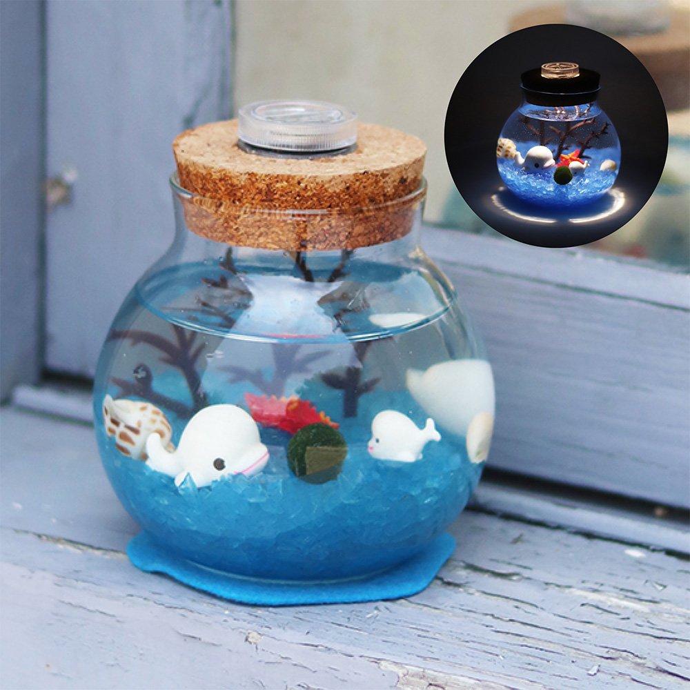 【Light+】幸福球藻-海底世界(藍)