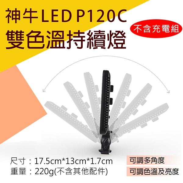 攝彩@神牛LEDP120C雙色溫持續燈-不含充電組 LED外拍攝影燈116顆補光燈 可調色溫亮度