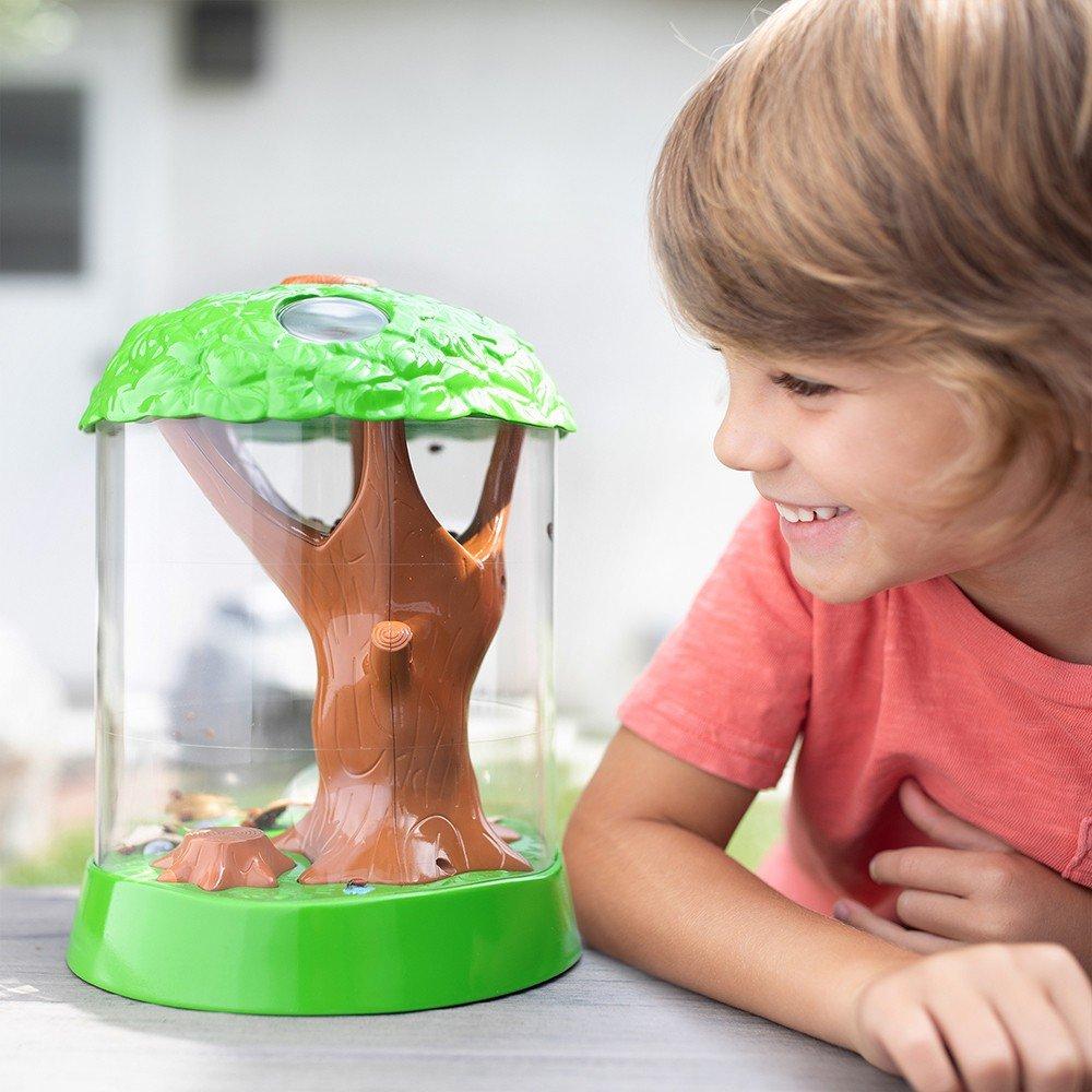 美國Educational Insights 小小探險家-大樹情境生物觀察箱