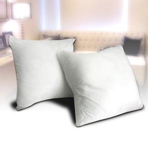【凱蕾絲帝】特級可水洗棉~抱枕裸棉內材48~50CM專用(2入1組)