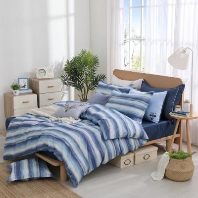 OLIVIA  海克力斯 標準雙人床包冬夏兩用被套四件組 300織匹馬棉 台灣製