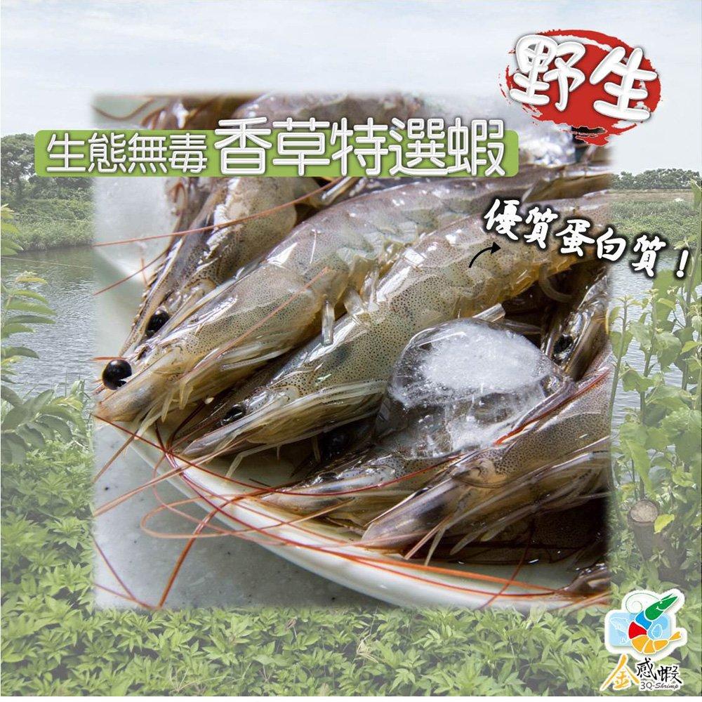【金感蝦】野生生態無毒香草特選蝦-3盒組(300g/盒)