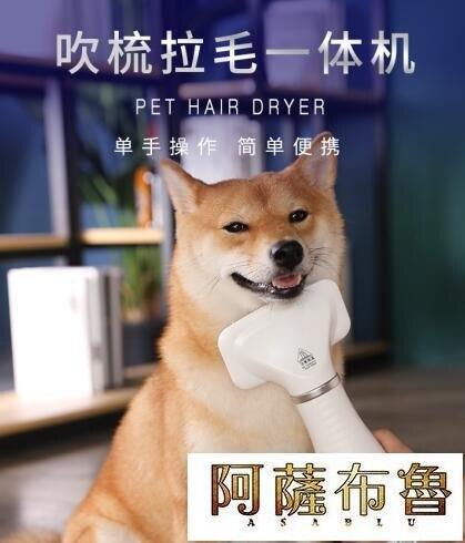 [快速出貨]吹風機寵物吹風機狗狗梳吹毛吹干神器專用吹水機大型小型犬梳毛靜音貓咪凱斯盾數位3C 交換禮物 送禮