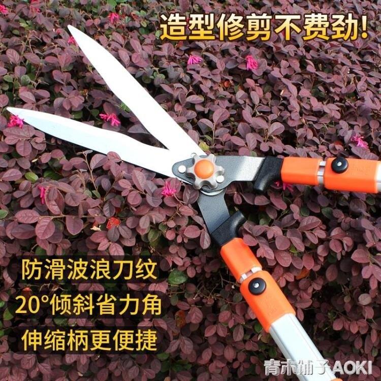 花剪園藝剪刀園林工具綠化修枝剪樹枝果樹大草坪剪強力修花園藝剪