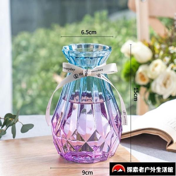 2個裝 玻璃花瓶透明插花瓶擺件客廳北歐水培【探索者】