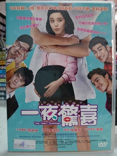 挖寶二手片-N02-014-正版DVD-華語【一夜驚喜】-范冰冰 吳佩慈(直購價)