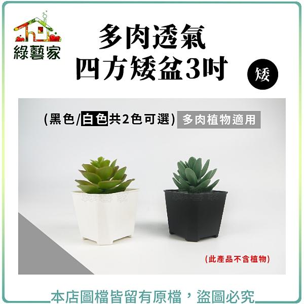 【綠藝家】多肉透氣四方矮盆3吋(矮)(黑色.白色共2色可選)