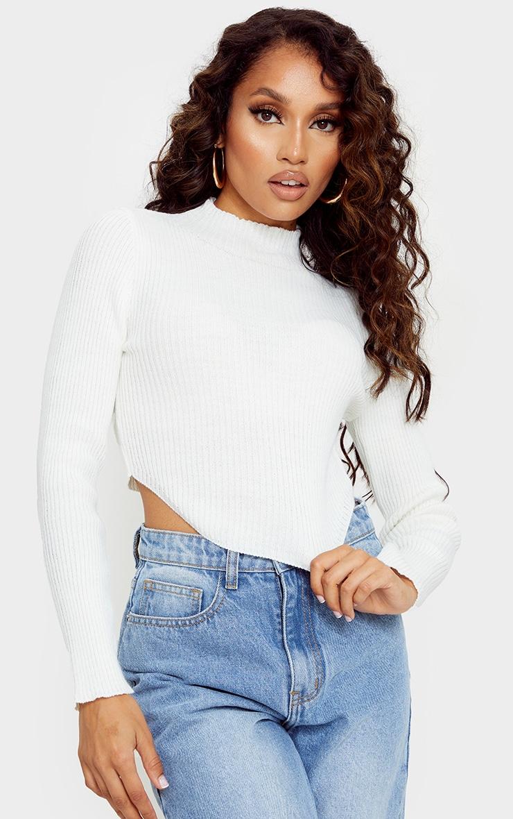 Petite Cream High Neck Curve Hem Sweater