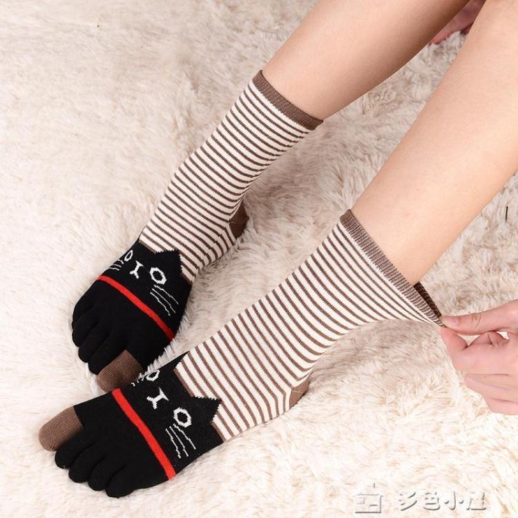 五指襪5雙盒裝女士秋冬純棉五趾襪中高筒全棉卡通貓寬鬆羅口孕婦五 交換禮物