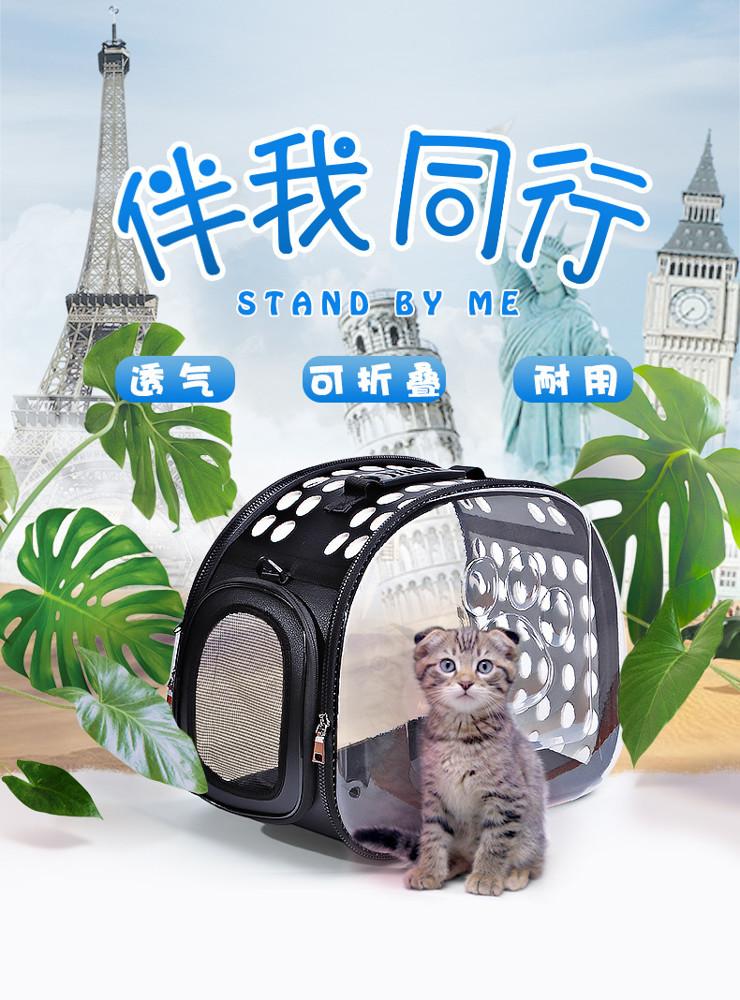 精選寵物外出包寵物背包貓包貓咪外出便攜包寵物透明狗包外帶手提貓袋貓籠狗狗寵物包 黛雅