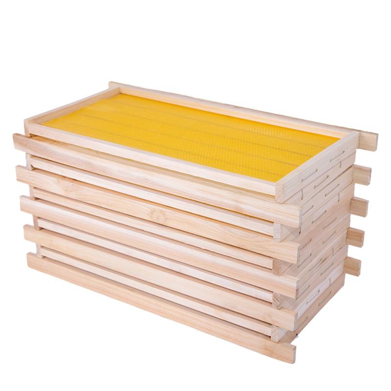 帶巢礎框成品巢框蜂巢中蜂杉木巢基蜜蜂巢框蜂箱專用養蜂工具