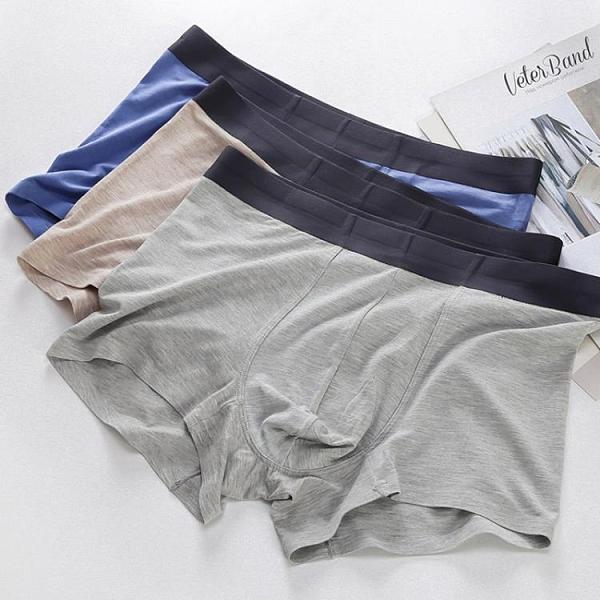 促銷 單條夏季男士莫代爾內褲全棉平角褲純棉質性感潮青年舒適四角褲頭