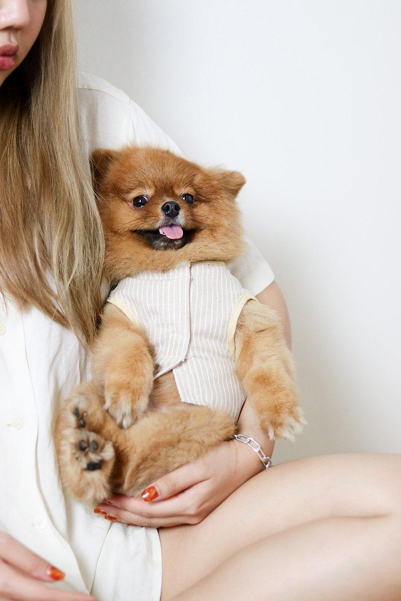 仙人掌黃帶寵物衣服採用天然材料製成,舒適亞麻。