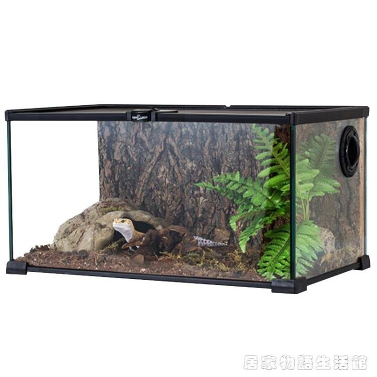 【快速出貨】玻璃爬缸蜥蜴守宮蛇甲蟲陸龜爬寵爬蟲角蛙飼養箱盒創時代3C 交換禮物 送禮