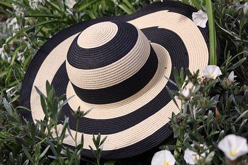 """寬邊條紋帽子"""" Liz"""" Liz"""
