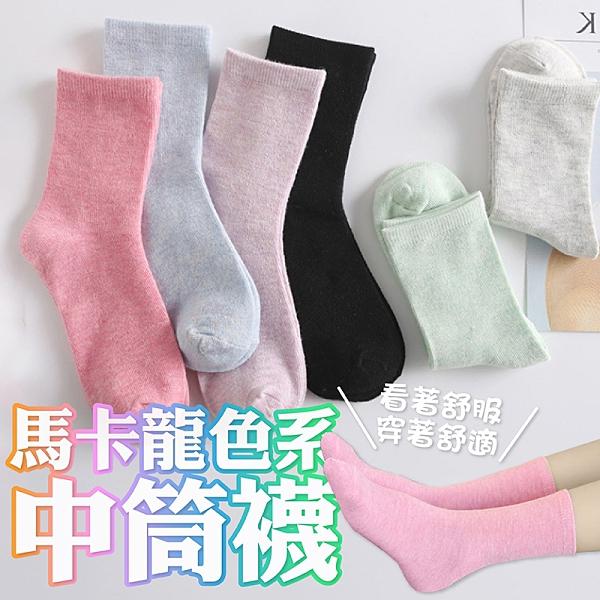 韓國襪子 基本款素色襪【CL002】快速出貨 正韓少女襪 男襪 中筒襪長襪 韓襪韓國襪船型襪短襪棉襪