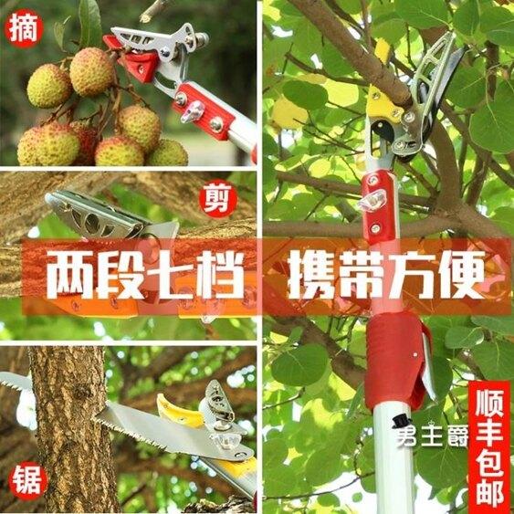 摘果器 高枝剪伸縮摘果剪摘果神器多功能高空剪摘枇杷果樹剪刀高枝XW 快速出貨