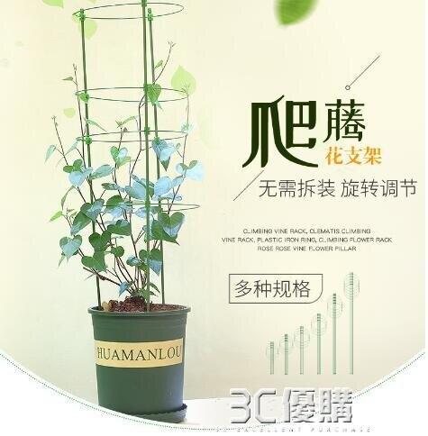 護葉架植物花卉固定支架爬架花架月季綠蘿花盆支架室內綠植爬藤架