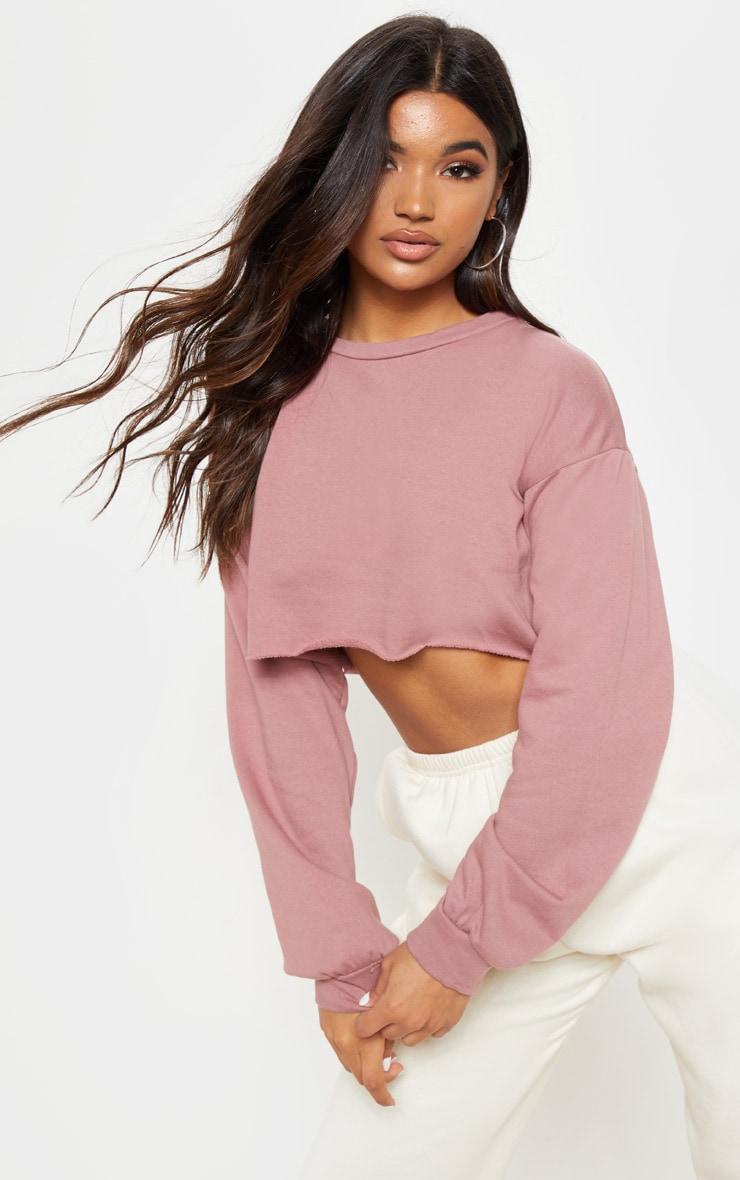 Mauve Cut Off Crop Longsleeve Sweater