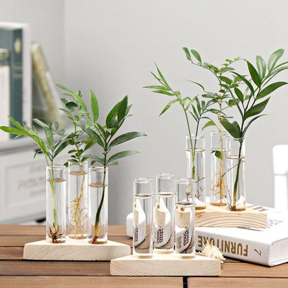 創意水培花瓶透明玻璃小清新木藝擺件插花瓶桌面綠蘿水養植物容器