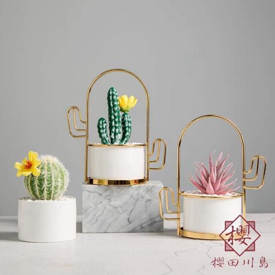 北歐創意植物盆栽客廳桌面裝飾擺件家居布置
