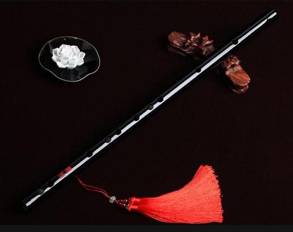 陳情令同款笛子竹笛初學樂器女生自學橫笛專業高檔精制演奏笛子 南風小鋪