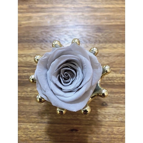 不凋花玫瑰,新色冰川灰,4-5公分賣場