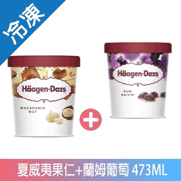 哈根達斯夏威夷果仁+藍姆葡萄冰淇淋473ML【愛買冷凍】