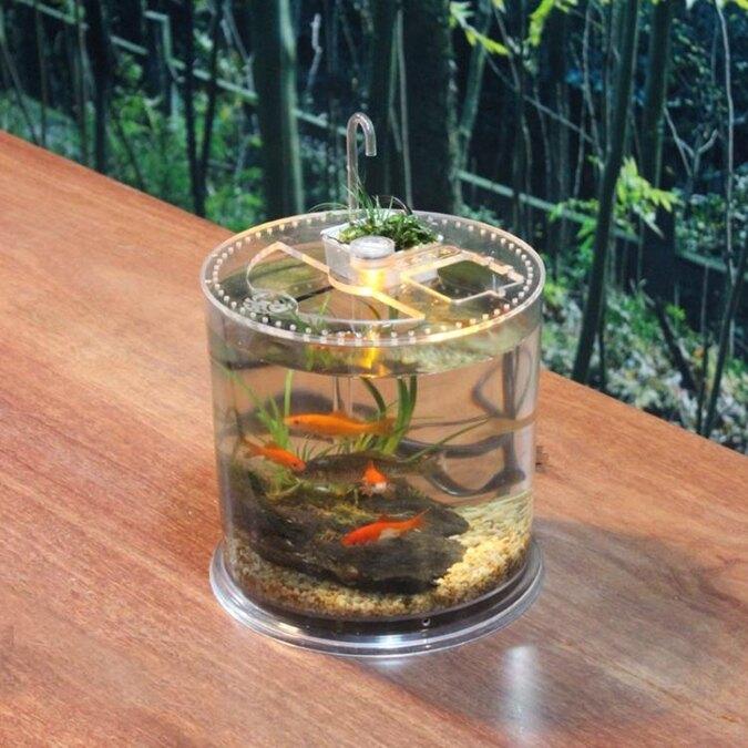創意圓柱形桌面魚缸小型烏龜缸帶曬臺爬蟲飼養盒透明亞克力造景箱 年貨節預購