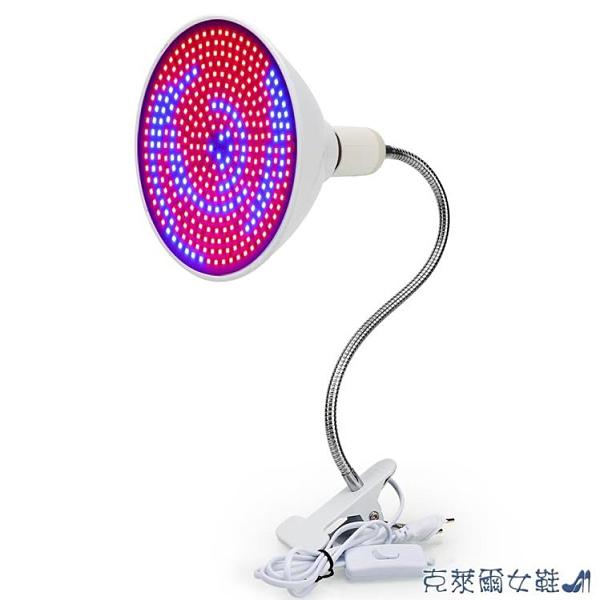 LED植物燈 10W 20W 50W 80W燈夾室內多肉花草E27紅藍光生長補光燈 快速出貨