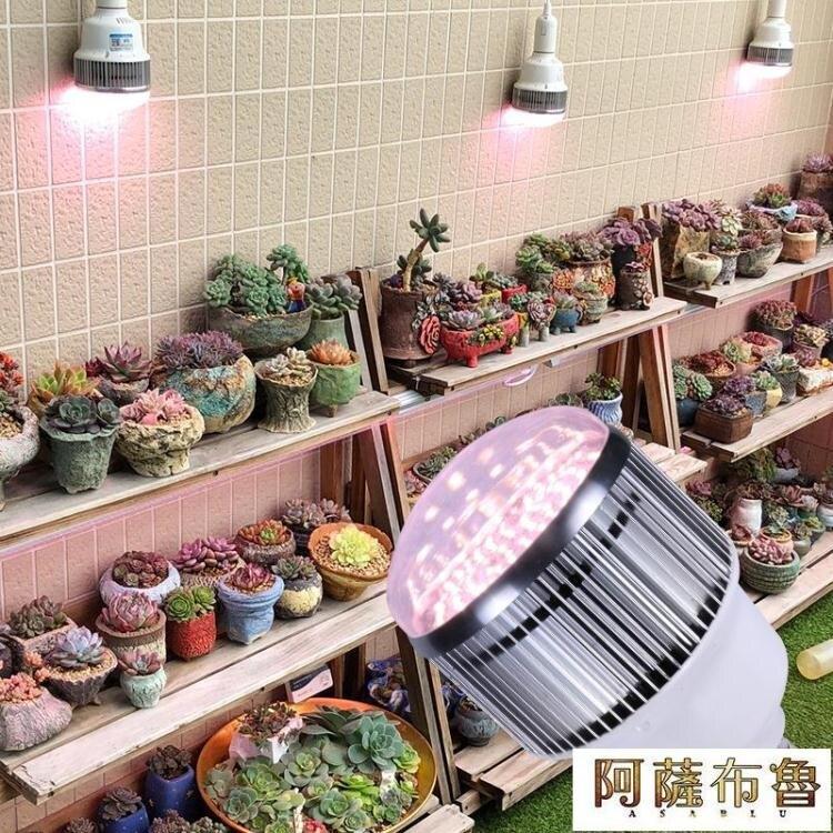 【免運】植物燈 貴翔 全光譜LED植物補光燈育苗草莓月季玫瑰花卉多肉室內生長燈 阿薩布魯