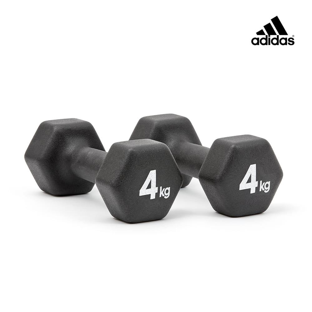六角訓練啞鈴(4kg)一對