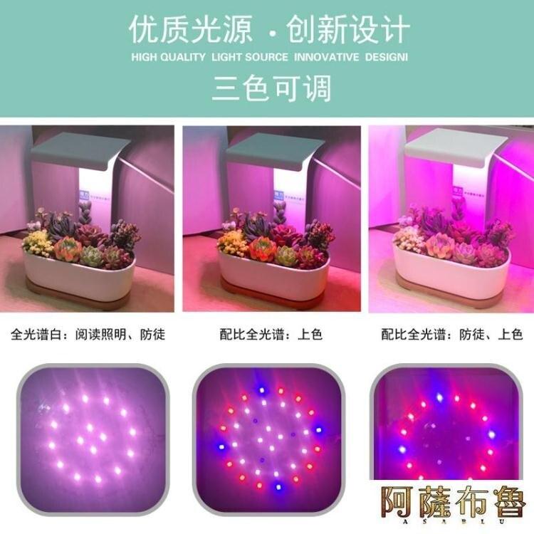 【免運】植物燈 植力【桌面補光燈】多肉植物led全光譜上色USB家用室內生石花肉錐 阿薩布魯