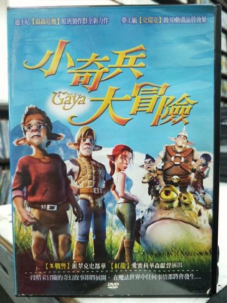 挖寶二手片-B06-147-正版DVD-動畫【小奇兵大冒險】-國英語發音(直購價)