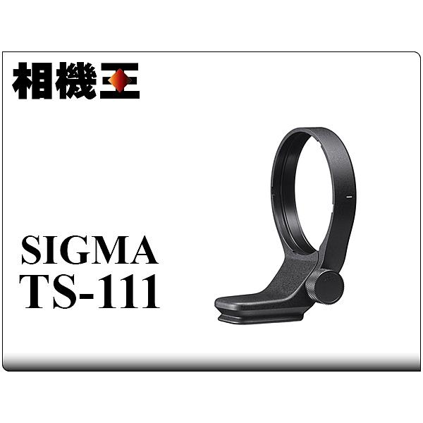 Sigma TS-111 Kit〔C 100-400mm DG DN 適用〕原廠腳架環 附肩帶