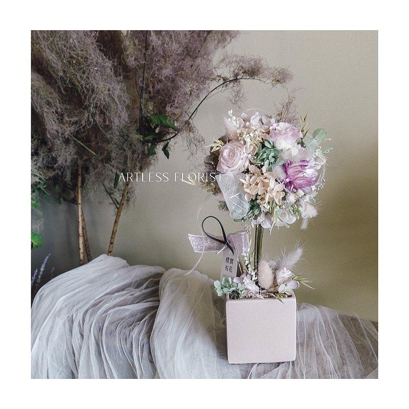 小仙女永生花球樹