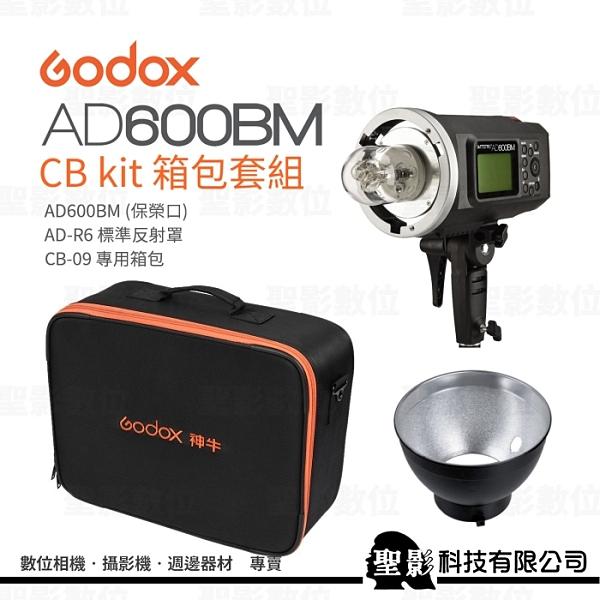 GODOX 神牛 AD600BM CB kit 箱包套組 (含 AD-R6 標準反射罩、CB-09 專用箱包)【開年公司貨】