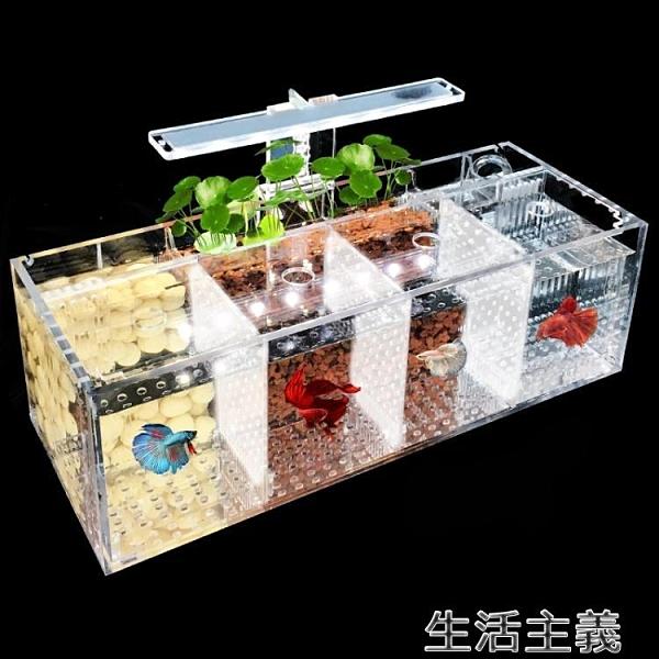 魚缸 鬥魚缸孔雀魚繁殖孵化隔離盒亞克力專用小組排缸活體桌面生態創意-完美