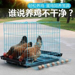 雞籠子養雞籠家用小號蛋雞籠鵪鶉養殖籠自動滾蛋折疊雞籠子雞舍 聖誕節全館免運