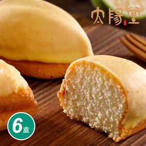 【太陽堂烘焙坊】極上檸檬餅禮盒6盒組(10入/盒 附提袋)