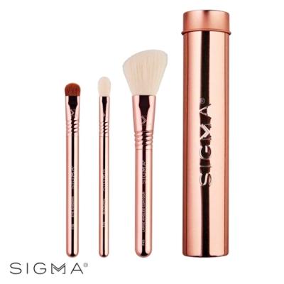 Sigma 基本旅行刷具3件組(含刷具罐)-玫瑰金 Essential Trio Brush Set #Rose Gold