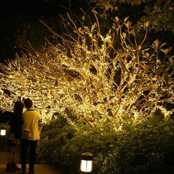 24v低壓燈串小彩燈閃燈串燈滿天星星燈戶外防水亮化樹燈裝飾布置 名購新品 秋冬特惠上新~