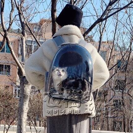 [限時優惠]全透明寵物包貓包外出便攜包狗狗雙肩包裝貓的外出包貓背包外出包