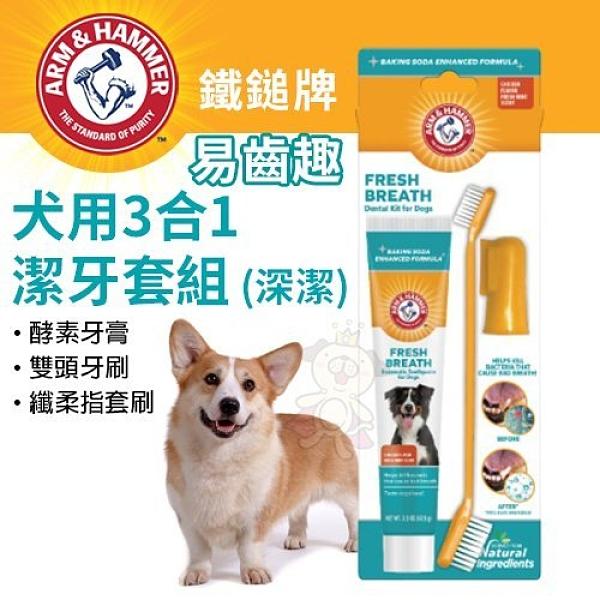『寵喵樂旗艦店』ARM&HAMMER鐵鎚牌 易齒趣 犬用3合1潔牙套組 (深潔)‧深層清潔牙齒‧犬用