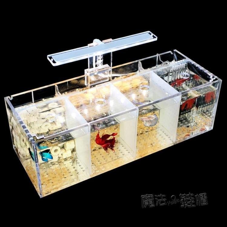 【限時下殺!85折!】斗魚缸孔雀魚繁殖孵化隔離盒亞克力專用小組排缸活體桌面生態創意